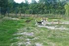 Kundenbild klein 6 Glahu Tierpension, Inh. Angela Bernhardt
